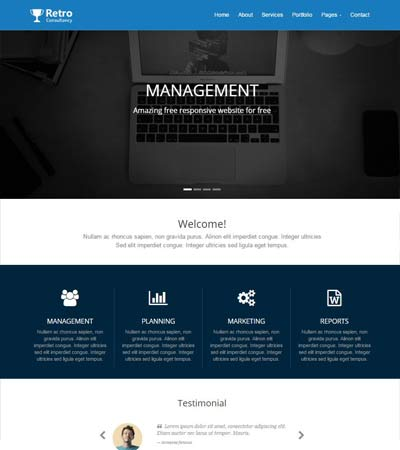 Most popular consulting website template webthemez for Consulting website