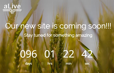 Coming soon Free Responsive Website Template