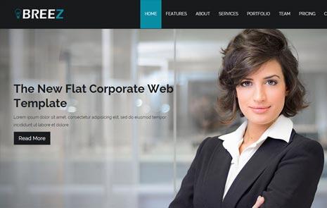 free corporate web theme