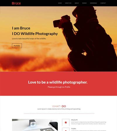 Free Photography HTML Bootstrap Website Templates WebThemez - Free html photography website templates