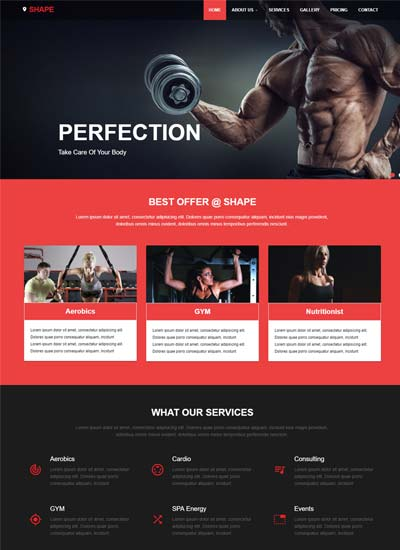 Best sports fitness website templates free download webthemez shape free fitness website template download maxwellsz